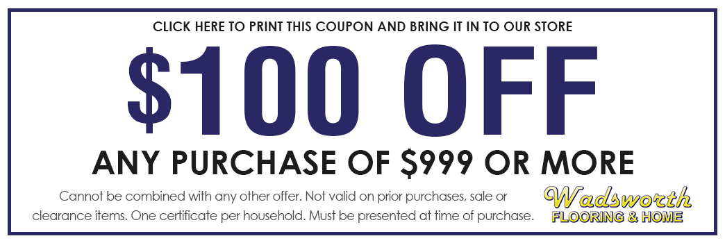 $100 off any purchase of $999 or more; click here to print this coupon and bring it in to our store